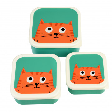 snackdoosjes set van 3 chester the cat